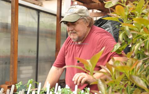 Botany Sales