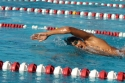 Swim Meet (Jose Jaime)