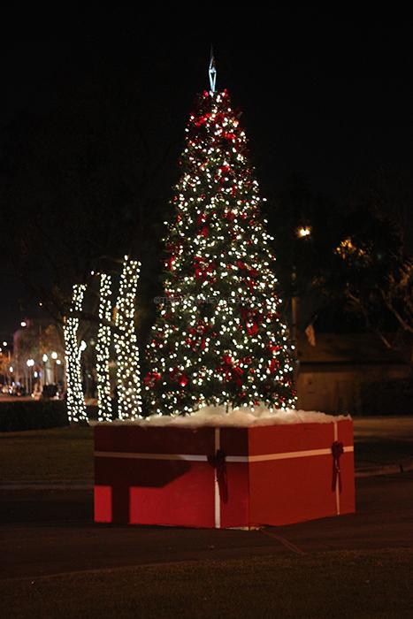 "On Mon., Dec. 9, at the Downey Civic Center, people gather to see the annual tree lighting ceremony. ""Looking at all the lights and the tree got me in the Christmas mood,"" senior Crystal Rolon said."