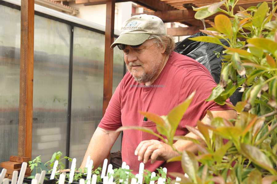"""On Tues., Mar. 4, Mr. Pittenger counts the plants and gets them ready for his next Botany class. """"Plants have the ability to do cool things animals can't,"""" Pittinger said. """"You can do surgery and clone them."""""""