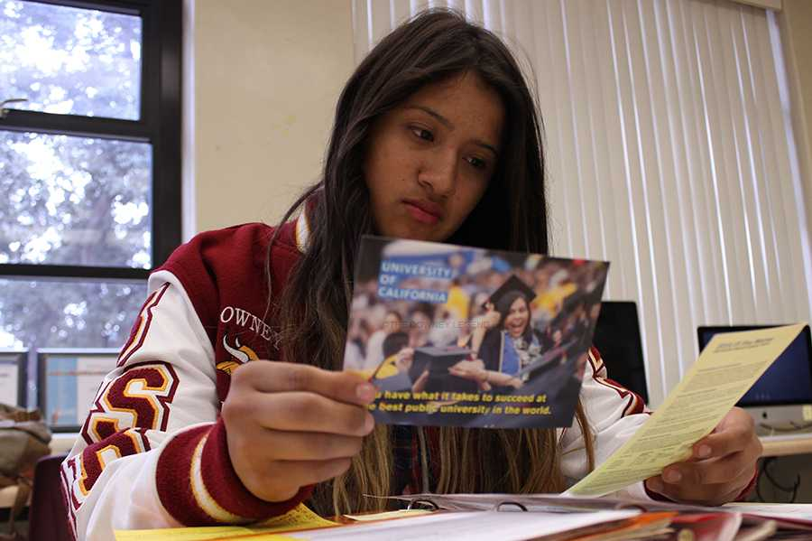 """Before the November deadline, senior Desiree Flores looks over the information for colleges that she applied to, such as UCs and Cal States, to review her options. """"It can be stressful when you leave everything at the last minute,"""" Flores stated."""