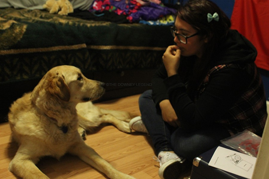 """On Jan. 12, senior Yasmin Goss-Guzman talks to her dog Paris, in her bedroom, about her everyday stresses. """"My dog is like my secret therapist; she helped me get through the passing of my old dog,"""" Goss-Guzman stated."""