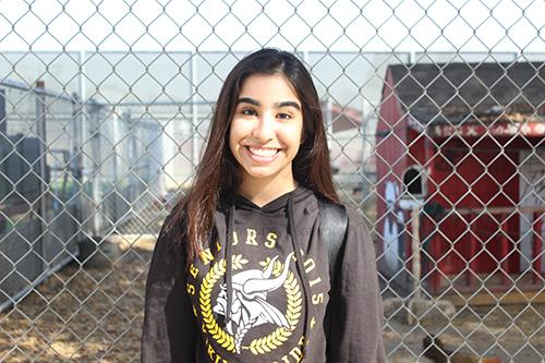 """After seven years of perfect attendance, Victoria Estrella, 12, explains why it is an accomplishment for her. """"I don't like the fact of getting homework the next day and being behind,"""" Estrella says. """"Also, I feel like teachers explain things better than friends."""""""