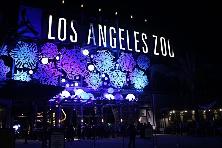 As Christmas draws near the LA Zoo hosts LA Zoo Lights from Nov. 27- Dec. 3 from 6 p.m.-10 p.m. The event is for all ages and filled with holiday music, characters, and treats.