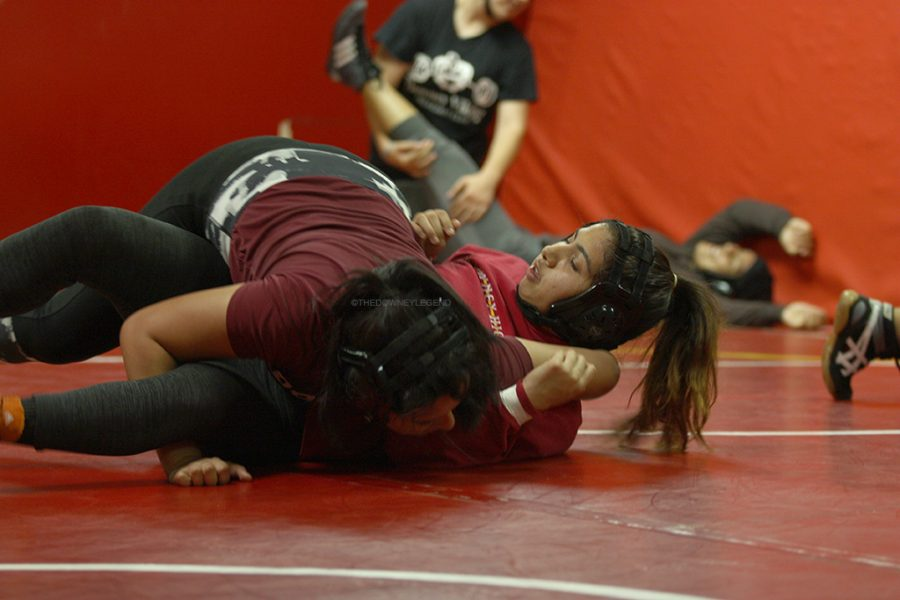 """Prior to wrestling season, Jessica Gudino, 12, practices for the upcoming wrestling match that will take place on Dec 3. """"We will just face each hardship ,"""" Gudino stated. """"Push through it despite any odds."""""""