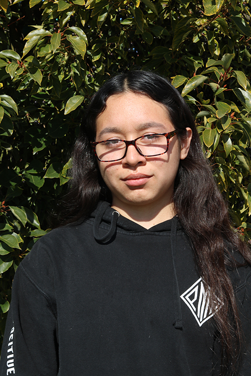 """Set on pursuing a career in animation, Diana Torres, 10, hopes to create her own program. """"I really enjoy doing art and I recently got into animation,"""" Torres said. """"I love bringing characters to life. I hope it can lead to a career in animation and creating shows."""""""