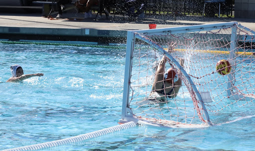 Downey High Girls Water Polo Wraps Up Their Season