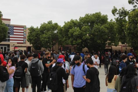 Now that schools are starting to open back up for the 2021-2022 school year, Downey High School has finally been able to return in person to campus school starting August 11, 2021. On March 13th, 2020 Downey High students were told they would only be staying home for two weeks max; which ended up being up to a year and a half of quarantine. Approximately 4000 students have come back to school and 300 stayed distance stated by Mr. Houts, Downeys fearless leader and principal.  As for students attending Downey High, 300 students are still doing distance learning making many students unaware of Downey's school spirit and as for the new students how are they liking Downey after not being there in such a long time.